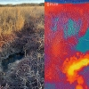 A photo of an area of a retired cranberry bog in Plymouth is seen next to a thermal infrared image of the same area, demonstrating warmer water in the pool. Source: Christine Hatch