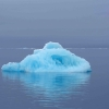 A lone vibrant blue iceberg floating in a calm purple sea with a gray, overcast sky.