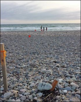 A cobble strewn beach on the New England shore, with a surveying stake in the foreground and several geologists surrounding a survey pole by the distance, near the impending and omniscient surf.