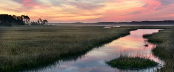 A water channel through a salt marsh during a dusky pink sunset.