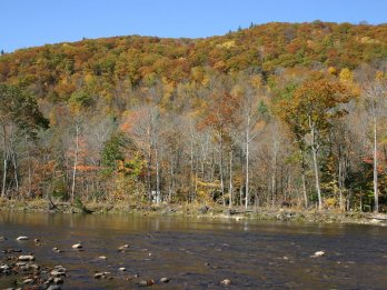 Autumn scene of wooded hills just past peak color, with tannin-colored Deerfield River in foreground.
