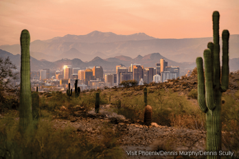 Picture of downtown Phoenix with mountains in background, framed by saguaro cacti