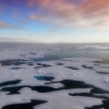 Floating  snow-covered ice sheets on calm sea, with ponds of meltwater, at dawn or dusk.